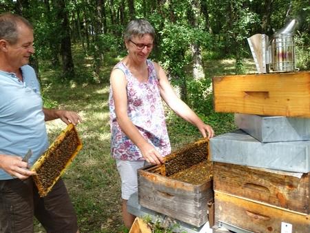 LA ruche de Fabienne